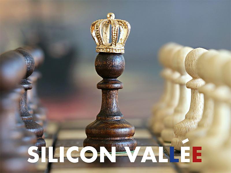 Visuel de couverture du projet de fiction Silicon Vallee par L'Incroyable Studio
