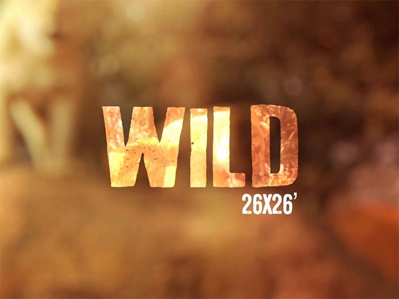 Visuel de couverture du projet de fiction Wild par L'Incroyable Studio